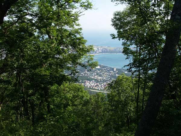 Вид на Геленджик из ресторанчика расположенного на вершине горы