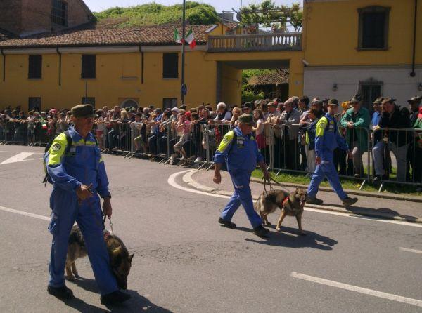 Собаки – помощники, разыскивают людей в горах и под завалами после землетрясений