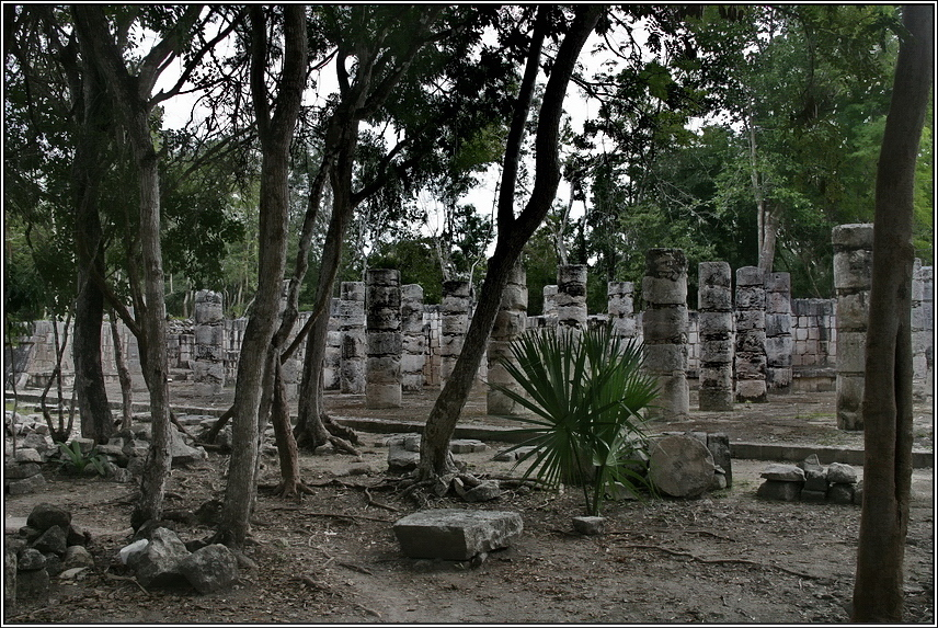 http://mia-italia.com/sites/default/files/allenatore/chichen-itza/NH1ig.jpg
