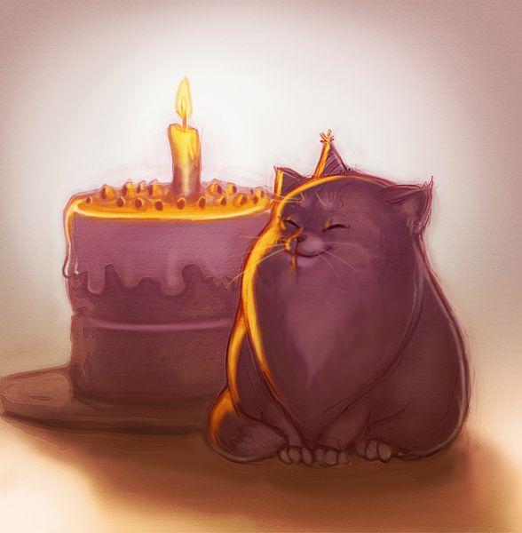 https://mia-italia.com/sites/default/files/birthday_cat.jpg