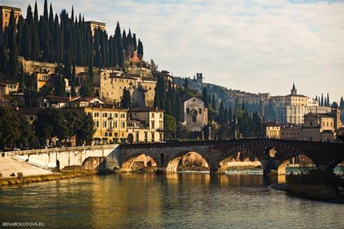 http://mia-italia.com/sites/default/files/bolotova/0_7d8cc_38ad2cfc_L.jpg