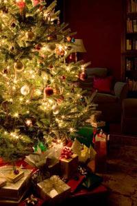 https://mia-italia.com/sites/default/files/christmas_tree.jpg