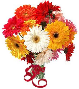 https://mia-italia.com/sites/default/files/flowers2gerberiiii_0.jpg