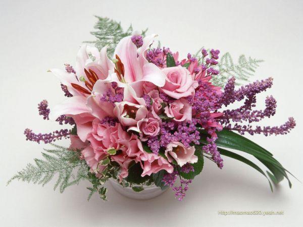 https://mia-italia.com/sites/default/files/flowers_wallpaper-1024.jpg