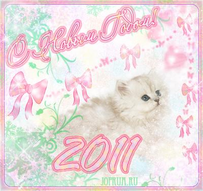 https://mia-italia.com/sites/default/files/otkrytka_new_year_2011_kot.jpg