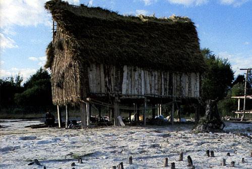 Доисторические жилища на сваях в окрестностях Альп. Фото
