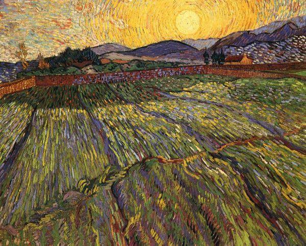 https://mia-italia.com/sites/default/files/wheat-field-with-rising-sun.jpg