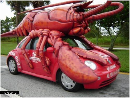 zoo_car1.jpg